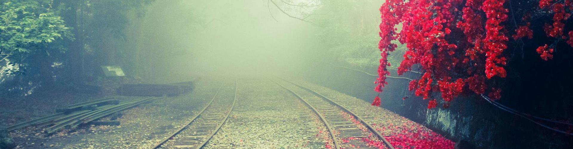 Sortez du brouillard
